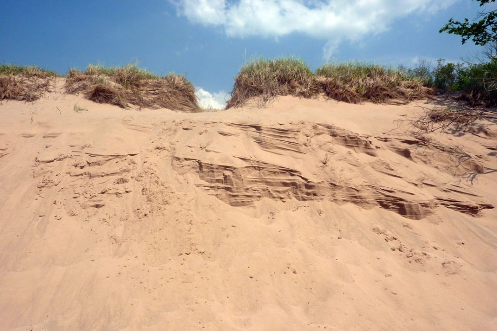 Wall of sand topped by scrub grass in Sleeping Bear Dunes National Lakeshore