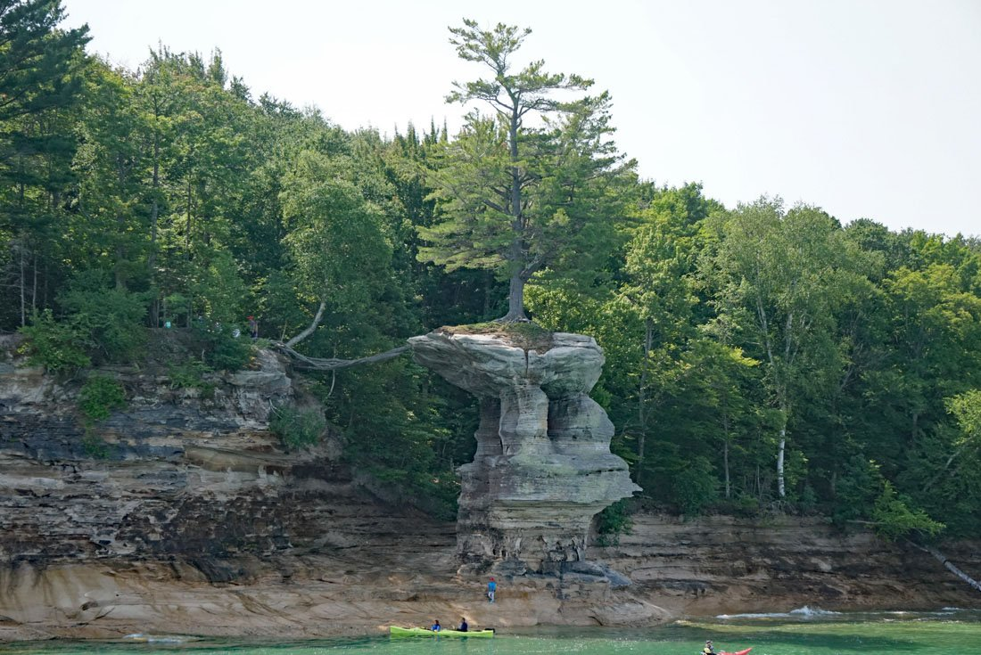 Lone pine tree atop Chapel Rock with its roots leading back to the cliff in Pictured Rocks National Lakeshore