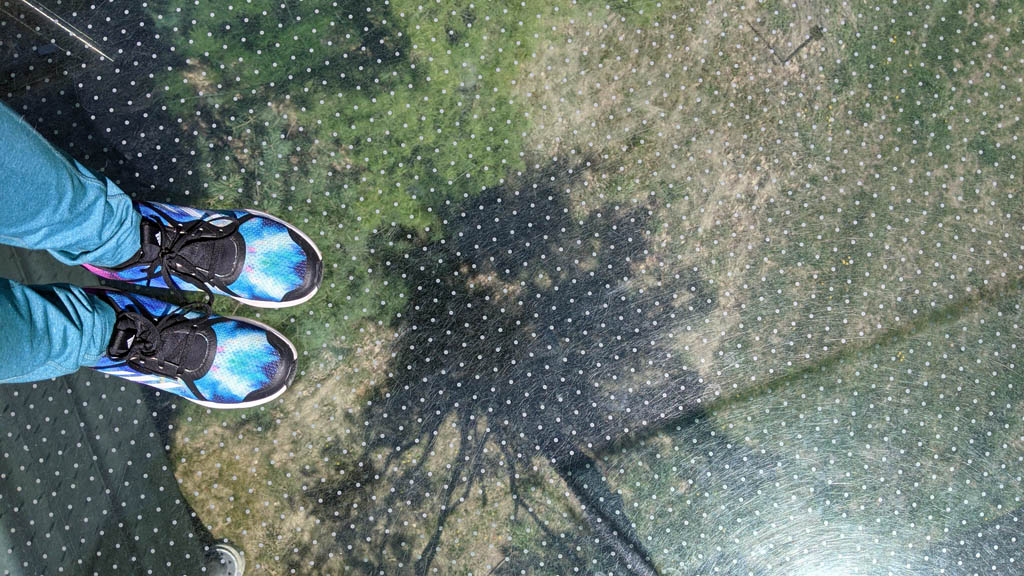 View looking straight down through a pane of glass with a woman's shoes visible standing on it at the Dow Gardens Canopy Walk in Midland, MI