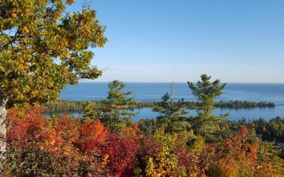 Thigs to Do in the Fall in Michigan