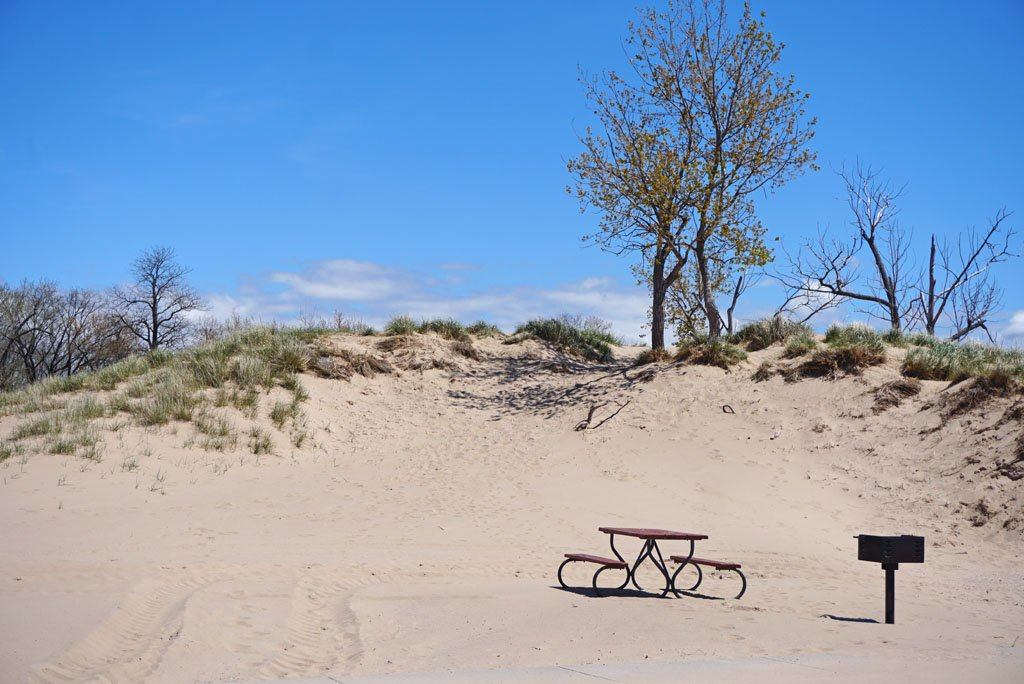 Photo of a small sand dune with scrub on top and a picnic table and grill in the foreground at Holland State Park