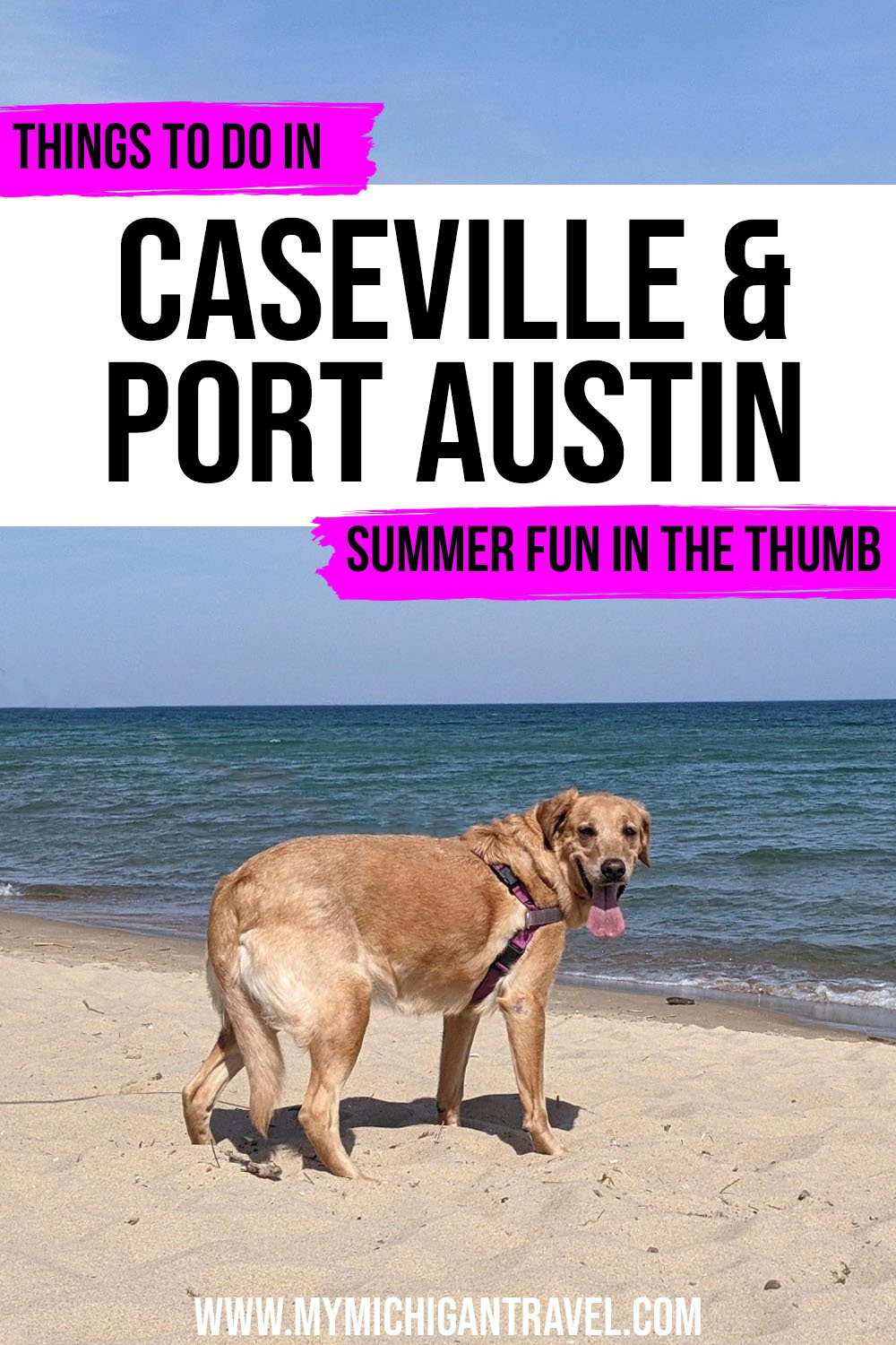 """Photo of a brown labrador retriever standing on a beach with turquoise water stretching out to the horizon behind her with text overlay reading """"Things to do in Caseville & Port Austin - summer fun in the thumb"""