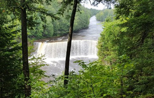 Tahquamenon Falls, a wide waterfall with brownish water surrounded by green foliage